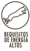 ALTAS NECESIDADES DE ENERGÍA